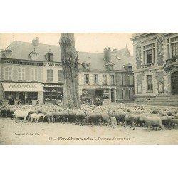 51 FERE CHAMPENOISE. Troupeau de Moutons Place de la Mairie et Familistère 1916