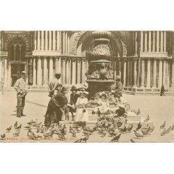 VENEZIA. Piccioni Porta della Chiesa San Marco