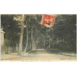 carte postale ancienne 95 BEAUCHAMPS. Avenue des Sapins animée 1912