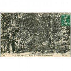 carte postale ancienne 95 MONTMORENCY. Route de Sainte Radegonde 1912