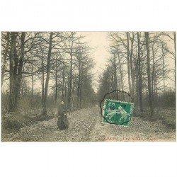 carte postale ancienne 95 TAVERNY. Une Allée en Forêt 1909