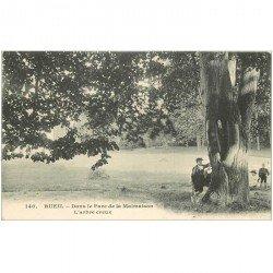 carte postale ancienne 92 RUEIL. L'Arbre creux dans Parc Malmaison