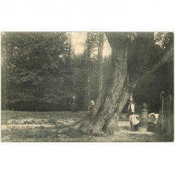carte postale ancienne 92 RUEIL. Fontaine au Bois de Cucufa