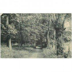 carte postale ancienne 92 MEUDON. Forêt, Allée des Duels et Tour de Villebon. Minuscule blanc coin gauche