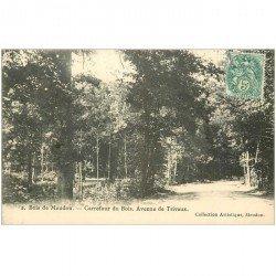 carte postale ancienne 92 MEUDON. Bois Clamart. Avenue de Trivaux et Carrefour vers 1906