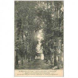 carte postale ancienne 92 LA MALMAISON. Avenue des Tilleuls ancienne Résidence de Napoléon Ier vers 1900