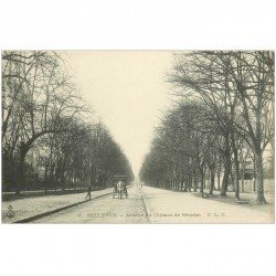 carte postale ancienne 92 BELLEVUE. Avenue du Château de Meudon