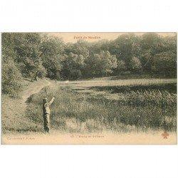 carte postale ancienne 92 VILLEBON. L'Etang dans Forêt de Meudon.