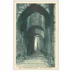 carte postale ancienne 04 SISTERON. Rue Longue Androne