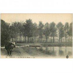 carte postale ancienne 80 AMIENS. Vache au Parc de la Hotoie
