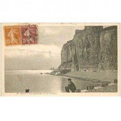 carte postale ancienne 80 AULT. Les Falaises vue générale 1929