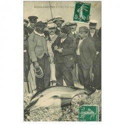 80 CAYEUX SUR MER. Pêche d'un Dauphin de 200 kg 1909. Carte devenue rarissime... Métiers de la Mer
