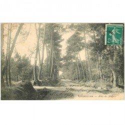 carte postale ancienne 85 ILE DE NOIRMOUTIER. Allée des Soupirs 1907
