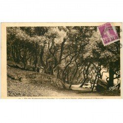 carte postale ancienne 85 ILE DE NOIRMOUTIER. Allée Estacade au Bois de Chaize 1933