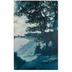 carte postale ancienne 85 ILE DE NOIRMOUTIER. Plage des Dames Bois de Chaize