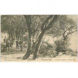 carte postale ancienne 85 ILE DE NOIRMOUTIER. Sous Bois menant à Estacade