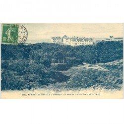 carte postale ancienne 85 SAINT GILLES SUR VIE. Chalets Scoff et Bois de Pins 1922