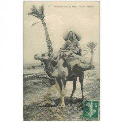 carte postale ancienne Algérie. Méhariste dans les Oasis du Sud Algérien vers 1910