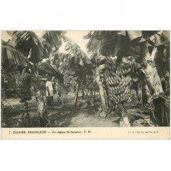 carte postale ancienne GUINEE. Un régime de bananes