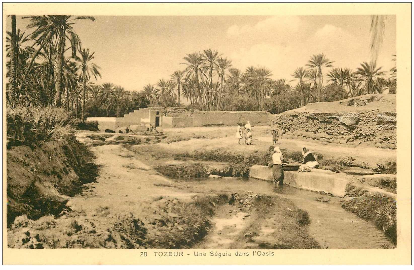 carte postale ancienne Tunisie. TOZEUR. Une Séguia dans l'Oasis animation