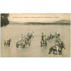 carte postale ancienne ETATS UNIS. Vermont. Swimming with Horses at Ecole Champlain. Ferrisburg