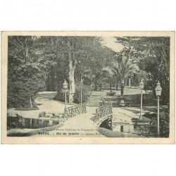 carte postale ancienne BRESIL. Rio de Janeiro. Jardin Public