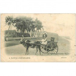 carte postale ancienne INDE. A native Conveyance. Attelage de Zébu 1908 (état moyen)...