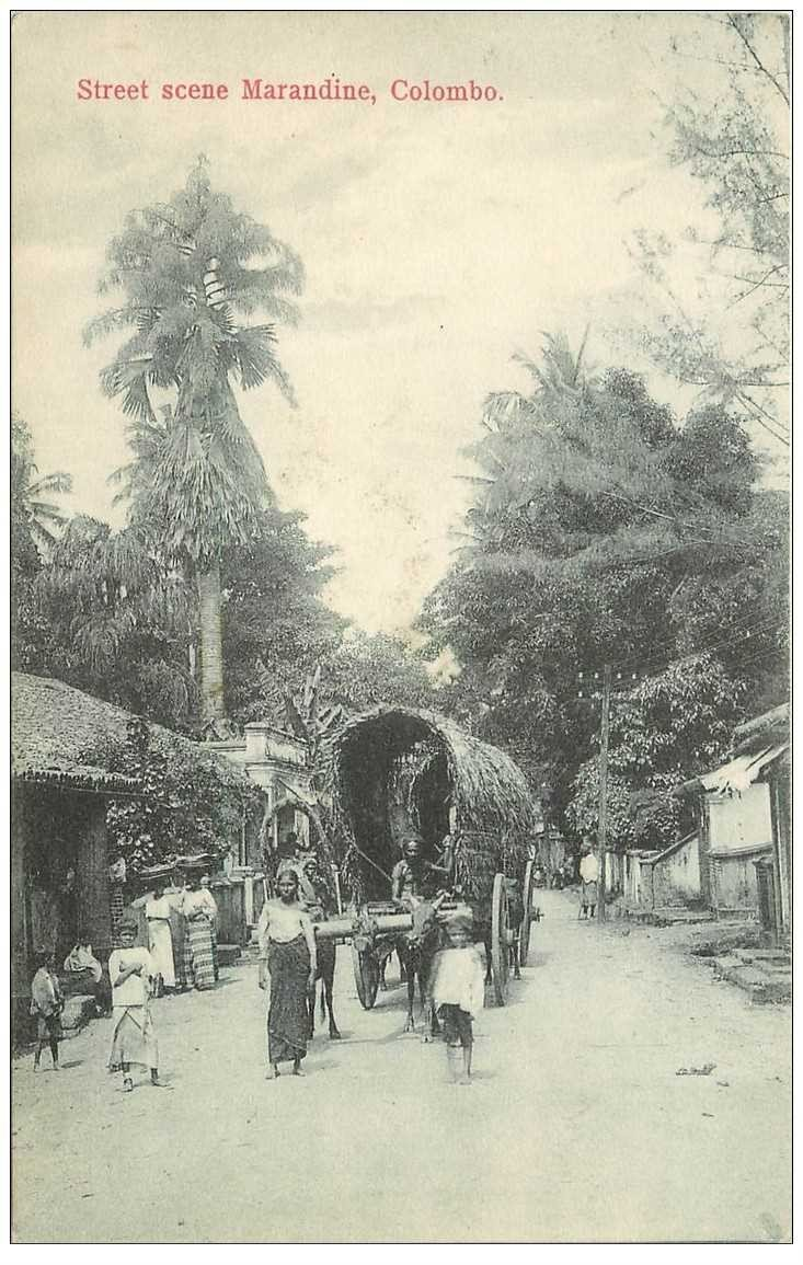 carte postale ancienne INDE. Colombo. Street scene Marandine attelage de Zébus