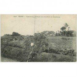 carte postale ancienne JAPON. Kobé. Japonaise portant des feuilles de bambous
