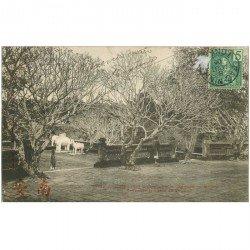 carte postale ancienne VIET NAM. Annam. Hué. Elephants et Chevaux de marbre Tombeau Tu Duc 1906