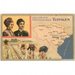 carte postale ancienne VIET NAM. Tonkin les Rizières Colonies Françaises. Quelques trous de punaise...