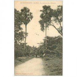 carte postale ancienne VIET-NAM. Cochinchine. Gia Dinh Route aux deux Palmiers 1910