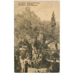 carte postale ancienne ISRAEL PALESTINE. Jérusalem. Jardin Gethsémané