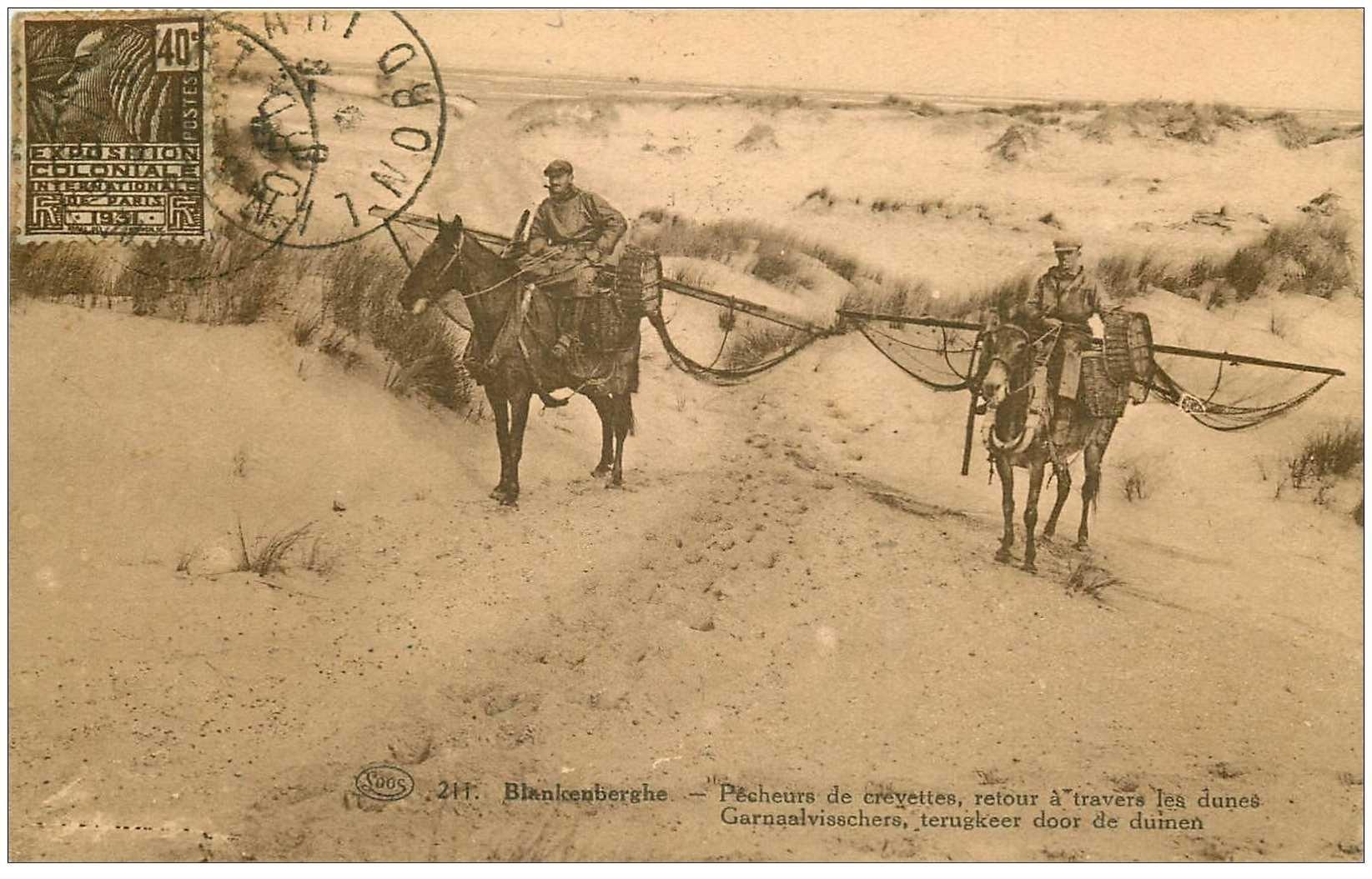 carte postale ancienne Belgique. BLANKENBERGHE. Pêcheurs de Crevettes à Cheval 1931. Pêches et Crustacées