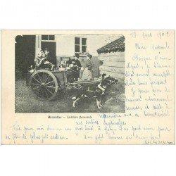 carte postale ancienne Belgique. BRUXELLES attelage de Chiens et Laitière Flamande 1902