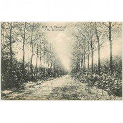 carte postale ancienne BOCKRYCK EIKENDREEF. Allée aux Chênes 1919. Timbre manquant