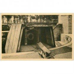 carte postale ancienne MOERE. Grand Canon Leugenboom la Pièce