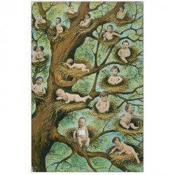 carte postale ancienne ENFANTS. Bébés dans des Nids sur l'Arbre 1904