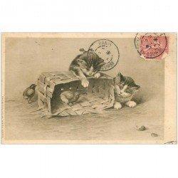 carte postale ancienne ANIMAUX. Chat. Deux petits Chatons et Poussins 1907