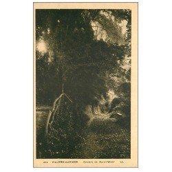 carte postale ancienne 14 VILLERS-SUR-MER. Chemin de Saint-Wast