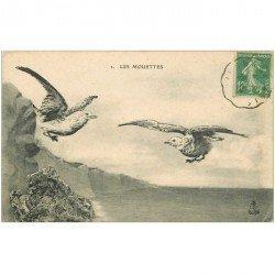 carte postale ancienne ANIMAUX. Oiseaux. Les Mouettes 1923. Fine cassure sous le timbre...