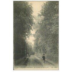 carte postale ancienne 14 VILLERS-SUR-MER. Chemin de San-Carlo 1916