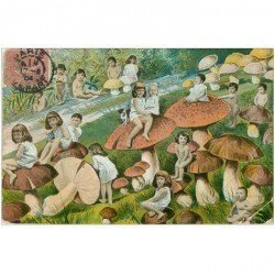 carte postale ancienne ENFANTS. Bébés sur champignons 1904. Grands plis