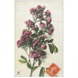 carte postale ancienne FLEURS. Bouquet de Pivoines de Paris 1911