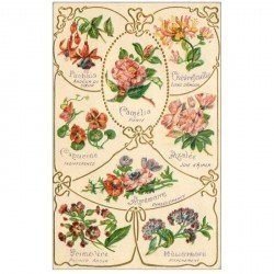 carte postale ancienne FLEURS. Le langage des Fleurs carte gaufrée 1908