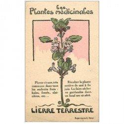 carte postale ancienne FLEURS. Plantes médicinales. Lierre terrestre
