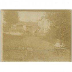 carte postale ancienne Uniquement Photo style photocopie d'époque. Un attelage de Chien pour brouette et enfant...