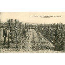 35 RENNES. Ecole pratique Agriculture des Troix-Croix. Le Jardin fruitier