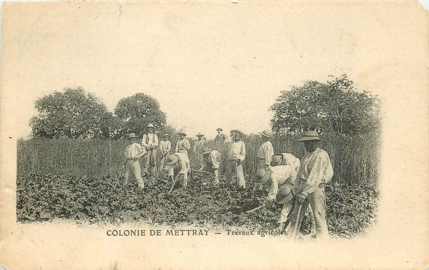 37 COLONIE DE METTRAY. Maison de redressement et Pénitencier. Travaux agricoles