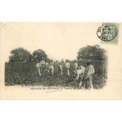 37 COLONIE DE METTRAY. Maison de redressement et Pénitencier. Travaux Agricoles 1905